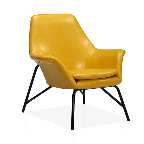 Modern Design Lounge Chair